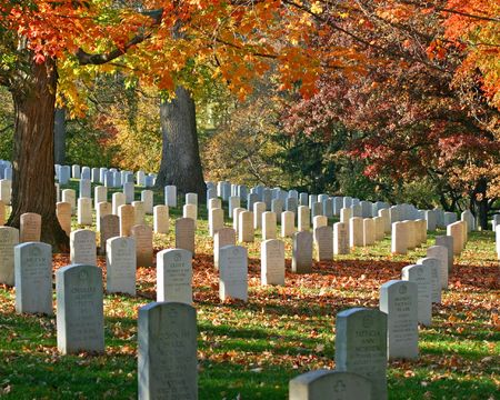 Graves at Arlington National Cemetary with fall foliage