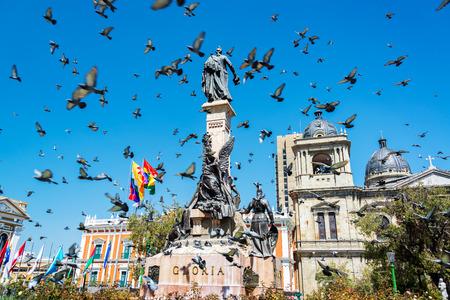 Pigeons flying around Plaza Murillo in La Paz, Bolivia