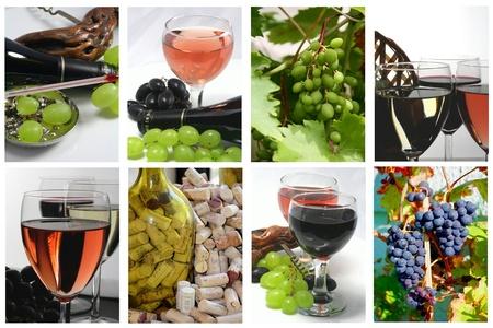 Tasting of glasses of wine
