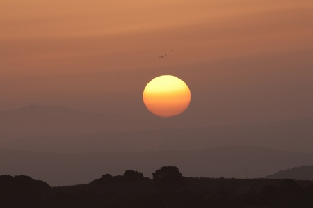 Sunrise and birds above a hill, Spain
