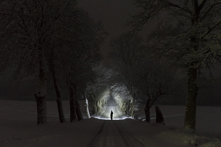 Photo pour Man standing outdoors at night in tree alley shining with flashlight. Beautiful dark snowy winter night. Nice landscape and nature photo with frost and snow in trees. Calm, peaceful abstract picture. - image libre de droit