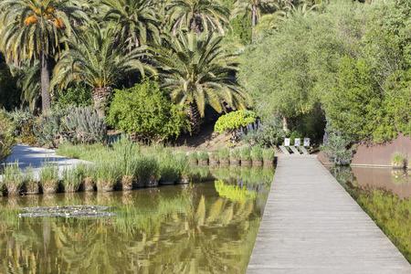 Botanical garden in Montjuic park, Barcelona.