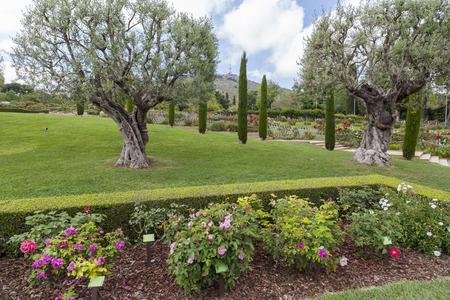 Park Cervantes,rose garden,Barcelona.
