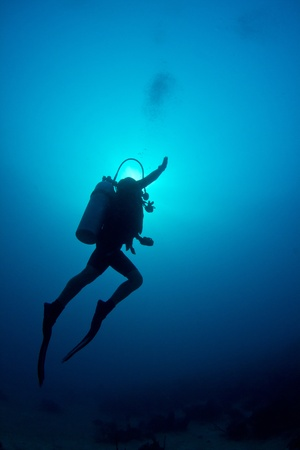 A scuba diver ascends through the crystal clear waters of The Caribbean.