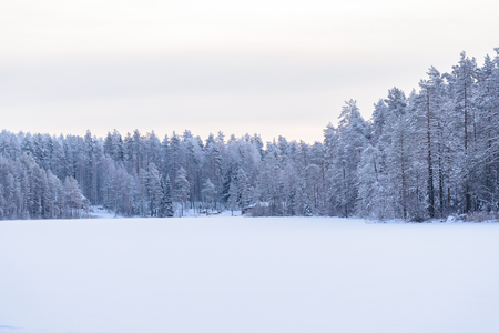 Photo pour The forest on the ice lake has covered with heavy snow and sky in winter season at Lapland, Finland. - image libre de droit