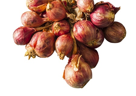 Close-up of red onion