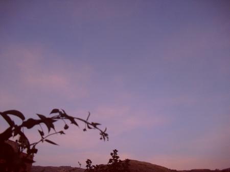 enigmatic twilight colors