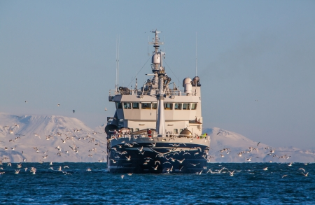 Icelandic offshore commercial pelagic fishing vessel off the coast of Iceland