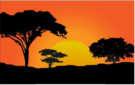 Illustration pour sunset in african forest - image libre de droit