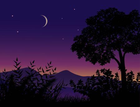Illustration pour Tree silhouette night time - image libre de droit