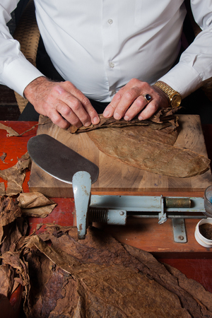 old man torcedor rolling hand made cigars