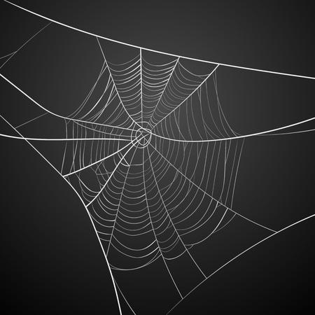 Illustration pour White spider web on dark background - image libre de droit