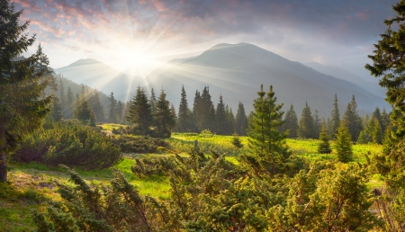 Beautiful summer landscape in the mountains. Sunrise