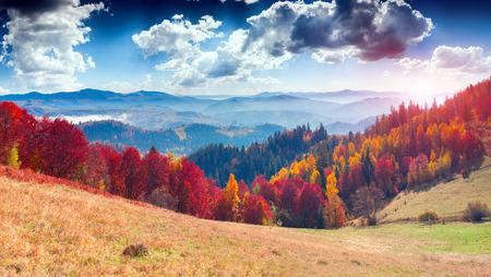 Colorful autumn landscape in the mountain village. Foggy morning in the Carpathian mountains. Sokilsky ridge, Ukraine, Europe.