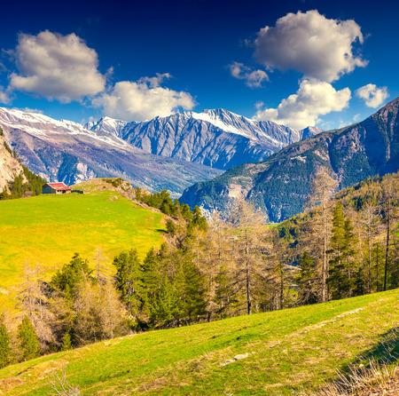 View from the Col de la Bonette pass, Saint Dalmas le Selvage, Alps, France, Europe.