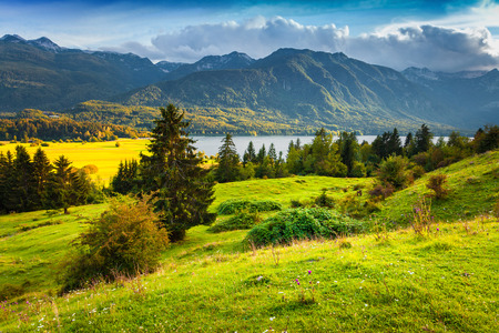 Foto de Colorful summer morning on the Bohinj lake in Triglav national park Slovenia, Julian Alps, Europe. - Imagen libre de derechos