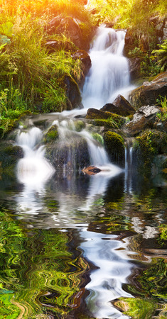 Small natural spring waterfall surrounded by moss and glass reflection in pure water