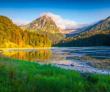 Colorful summer morning on the incredibly beautiful Swiss lake Obersee, located near Nafels village. Alps, Switzerland, Europe.