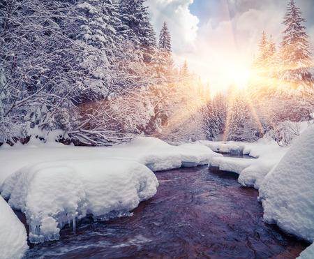 Foto de Colorful morning with dark river in the winter mountain forest. - Imagen libre de derechos