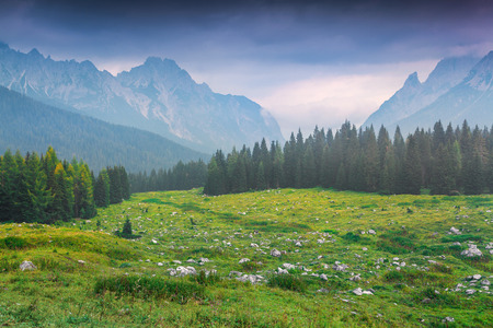 Photo for Cresta di Enghe mountain range at foggy summer morning. Dolomites mountains, Italy, Europe. - Royalty Free Image