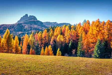Photo pour Impressive morning view from the top of Giau pass. Colorful autumn landscape in Dolomite Alps, Cortina d'Ampezzo location, Italy, Europe. Beauty of nature concept background. - image libre de droit