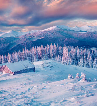Photo pour Magnificent winter sunset in mountain forest with snow covered fir trees. Colorful outdoor scene, Happy New Year celebration concept. Artistic style post processed photo. - image libre de droit