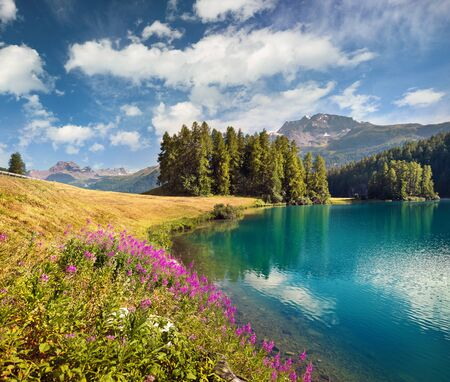 Photo pour Colorful summer scene of Champferersee lake. Exciting morning view of Silvaplana village in the morning mist. Great sunny landscape of Swiss Alps, Switzerland, Europe. Beauty of nature concept background. - image libre de droit