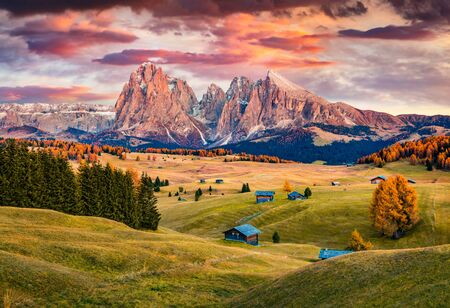 Photo for Unbelievable sunrise on Alpe di Siusi mountain plateau with beautiful yellow larch trees and Langkofel (Sassolungo) mountain on background. Autumn evening in Dolomite Alps, Ortisei locattion, Italy. - Royalty Free Image