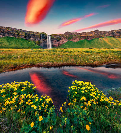 Photo pour Astonishing summer sunrise on Seljalandsfoss - where tourists can walk behind the falling waters. Calm morning scene of Iceland, Europe. Beauty of nature concept background. - image libre de droit