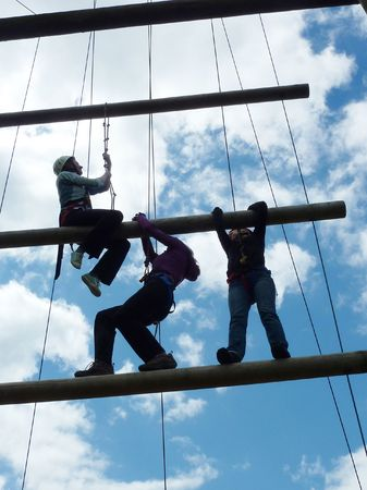 a group of employees on a team building exercise