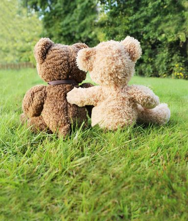 Two teddy bears in love sitting on grass