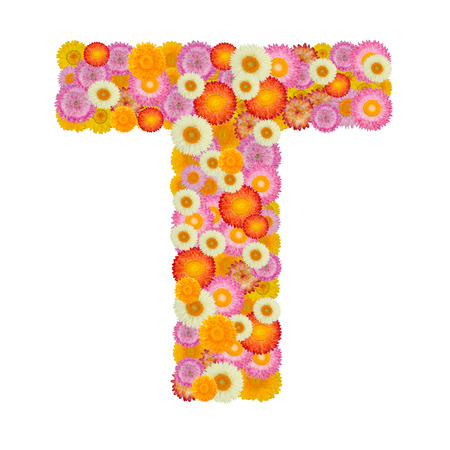 Letter T alphabet with straw flower isolated on white background