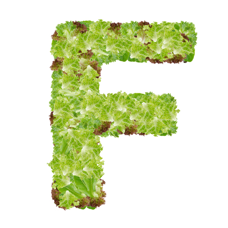 Letter F alphabet with hydroponics leaf  ABC concept type as logo isolated on white background