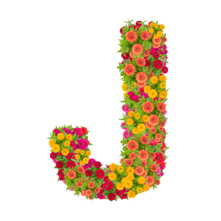 Letter J alphabet made from zinnia flower ABC concept type as logo.Typography design with clipping path