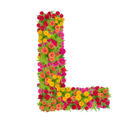 Letter L alphabet made from zinnia flower ABC concept type as logo.Typography design with clipping path