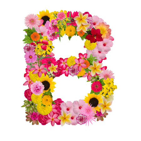 Foto de Letter B alphabet with flower ABC concept type as logo isolated on white background. With clipping path - Imagen libre de derechos