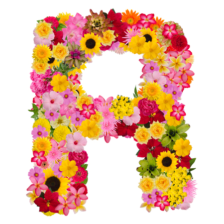 Foto de Letter R alphabet with flower ABC concept type as logo isolated on white background. With clipping path - Imagen libre de derechos