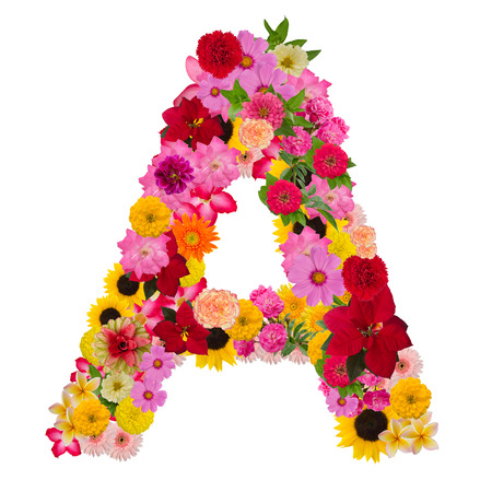 Foto de Letter a alphabet with flower ABC concept type as logo isolated on white background. With clipping path - Imagen libre de derechos