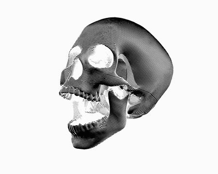 Illustration pour Engraving negative perspective view skull illustration screaming on white background - image libre de droit