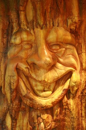 smiling face of an old tree in an enchanted forest