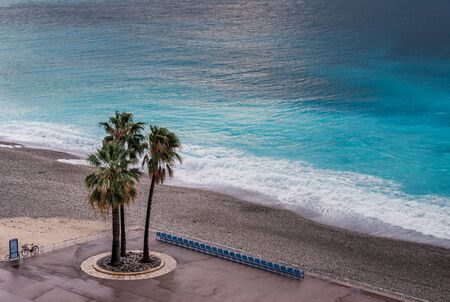 Photo for Three palm trees stand next to an empty row of chairs on the sea front on the Promenade des Anglais in Nice against the turquoise Mediterranean sea - Royalty Free Image