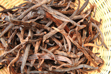 Photo for dark vanilla beans as nice spice background - Royalty Free Image