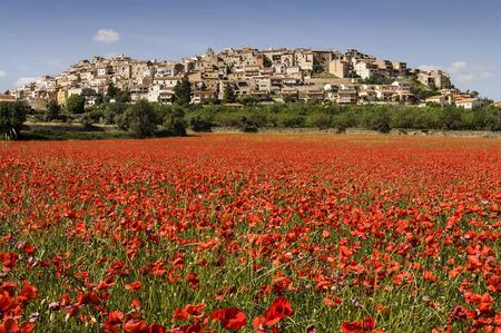 San Juan Horta  Horta de Sant Joan  1 is a municipality in Catalonia, Spain  It belongs to the province of Tarragona, in the region of Tierra Alta,