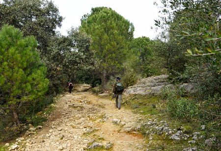 Mozarabic Camino de Santiago, Cerro Muriano in the Sierra of Cordoba, Spain