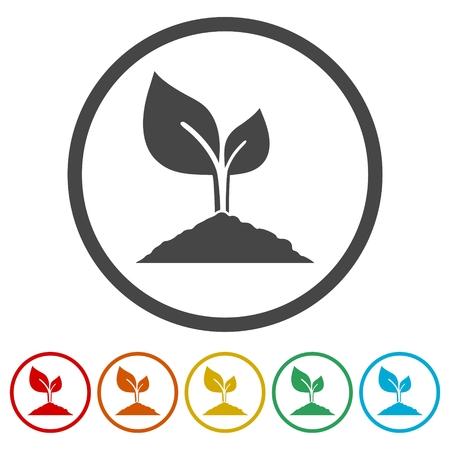 Illustration pour Young plant vector icons set - image libre de droit