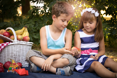 Little happy girl and a boy are sitting on a blanket in the park and playing in a beautiful sunny summer day. The girl hugging a little boy. Near the boy and girl there is a picnic basket with juice and lots of fruit.