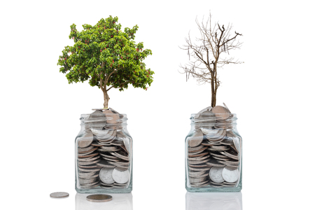 Photo pour Money growth concept profit and loss from investment on white background. - image libre de droit