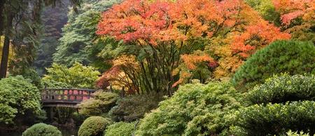 Photo pour Wooden Foot Bridge at Japanese Garden in the Fall Panorama - image libre de droit