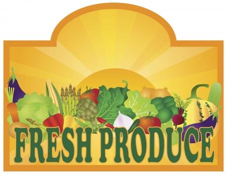 Vektor für Grocery Store Fresh Produce Colorful Vegetables and Sun Rays Signage Illustration - Lizenzfreies Bild