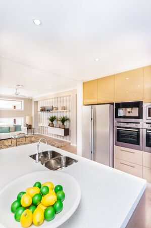 Photo pour Luxurious kitchen in the house. There are fruits on the plate like lemon near to faucet and the washstand top of the white worktop, The refrigerator and the oven  with pantry cupboards mount to the wall. There is well decorated room next to the cuisine - image libre de droit